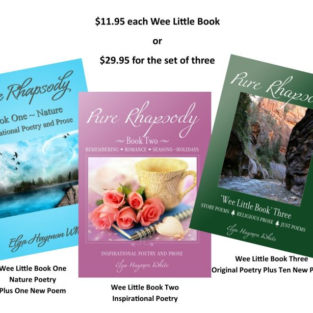 Pure Rhapsody Wee Little Books 3 book Holiday Special