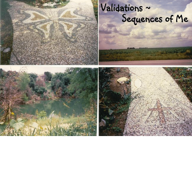 Validations, Sequences of Me by VicToria Freudiger